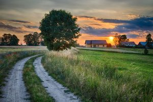 summer country setting